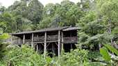 Een traditionele inheemse Dayak houten huis in de Borneo jungle.